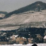Herrenkelter 1963; abgerissen 1982 // Zehnthausstraße von der Mosel aus gesehen